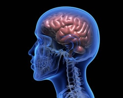 Vision Therapy in Treating Brain Injury 1